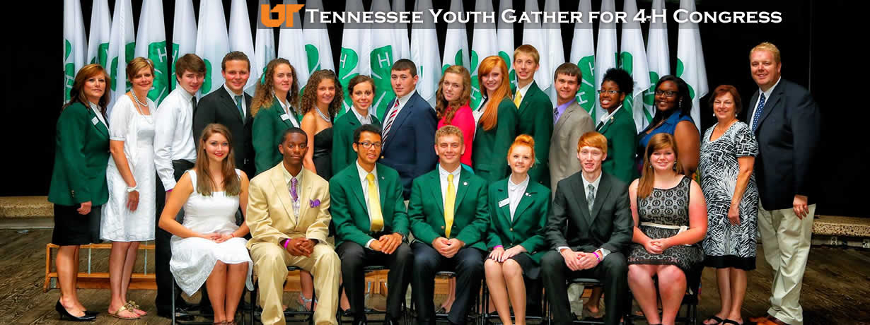 State 4-H Congress