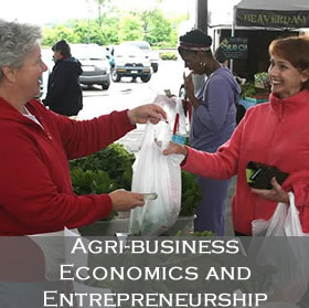 Link to Agri-Business Economics and Entrepreneurship Leadership Team