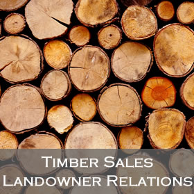 Timber Sales and Landowner Relations program link