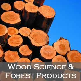 Wood Science and Forest Products link