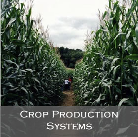 Link to Crop Production Systems Leadership Team