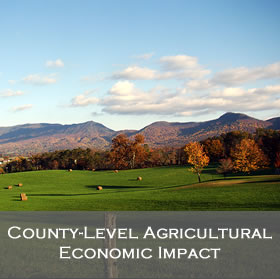 County-Level Agricultural Economic Impact