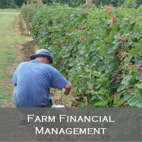Farm Financial Management Programs