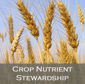 Crop Nutrient Stewardship Programs