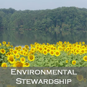 Link to Environmental Stewardship Leadership Team