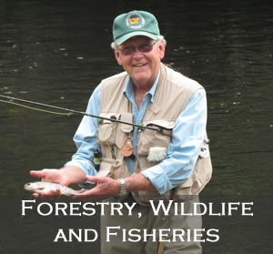 Forestry, Wildlife & Fisheries tile image
