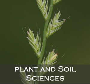 Plant & Soil Science tile image