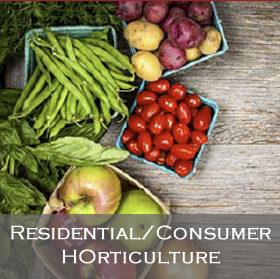 Link to Residential/Consumer Horticulture Leadership Team